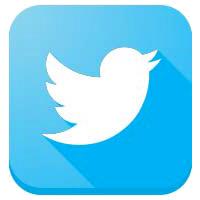 icona-social-twitter